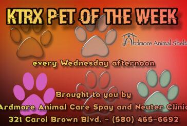 KTRX Pet of the Week